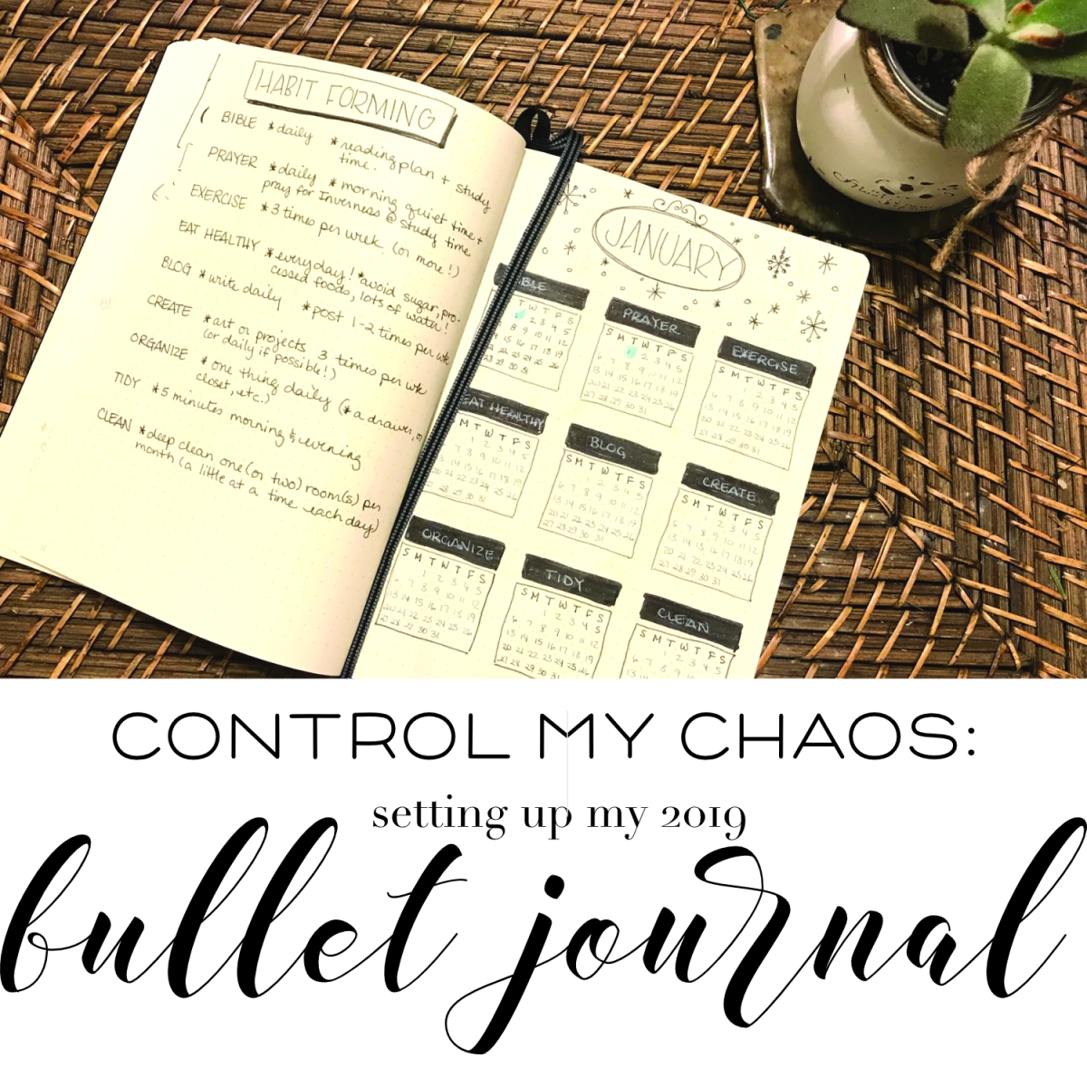 chaos control:  setting up my bullet journal for 2019